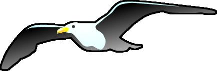 カモメのイラスト イラストカットcom