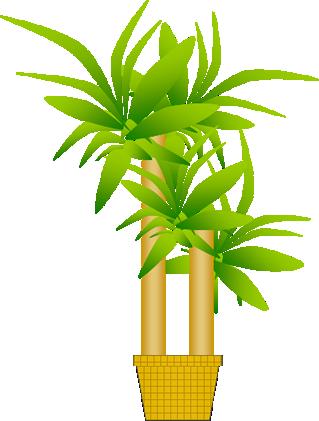 観葉植物のイラスト イラストカットcom